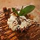 Chocolate Fudgecake Thumbnail